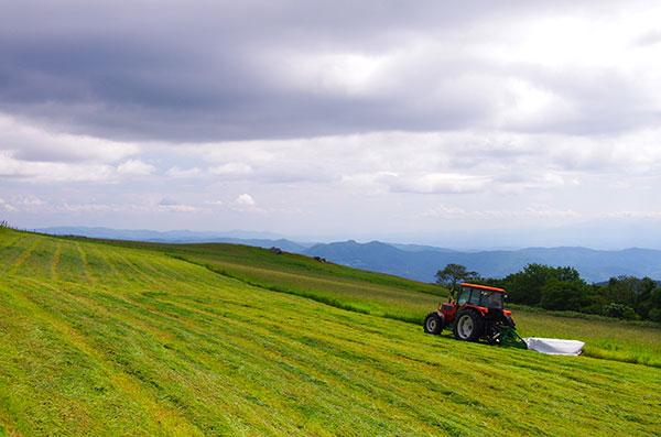 寺沢高原の牧草刈り
