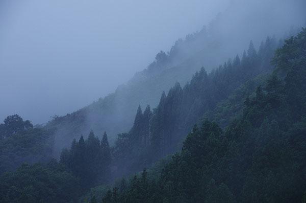 谷川岳山麓の霧