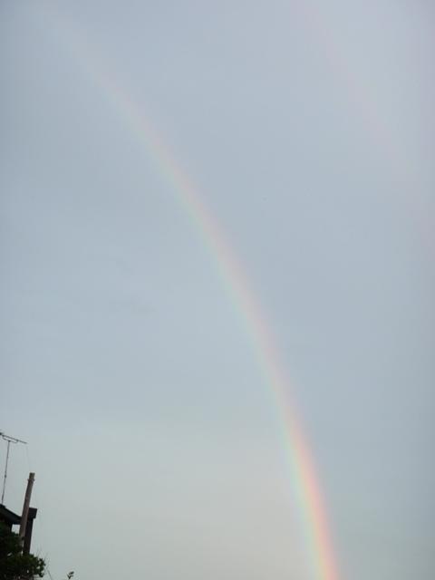 0_0803rainbow.jpg