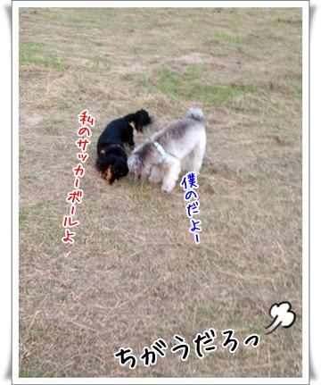 201406296.jpg