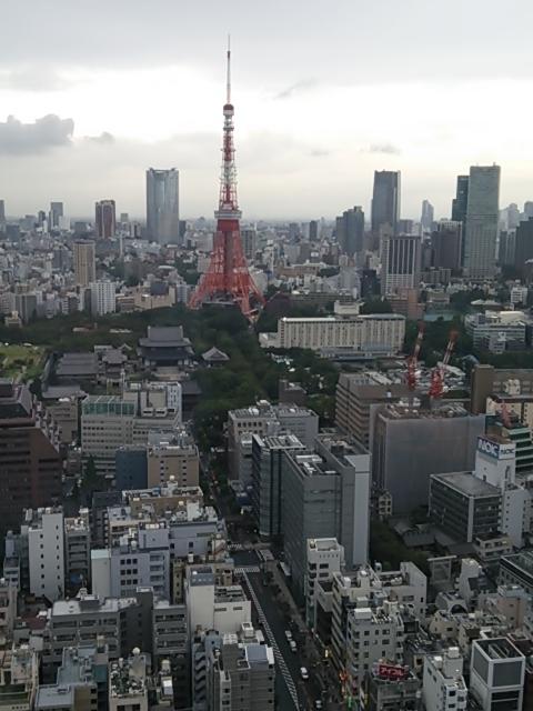 DSC_東京2
