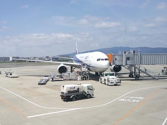 DSC_okinawa2.jpg