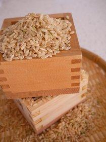 Brown rice in masu-cups