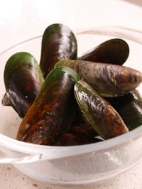Mussels-266