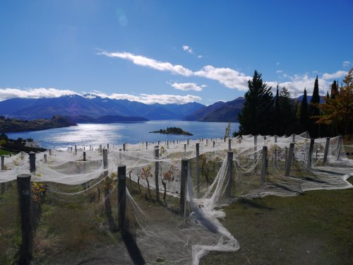 Rippon great view 8/4/14