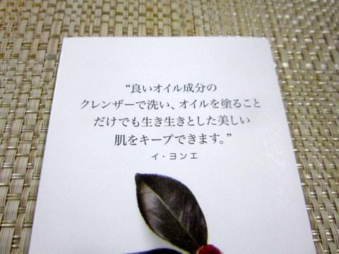 LYA Nature_リアネイチャー_三清洞ハウス(2-1)