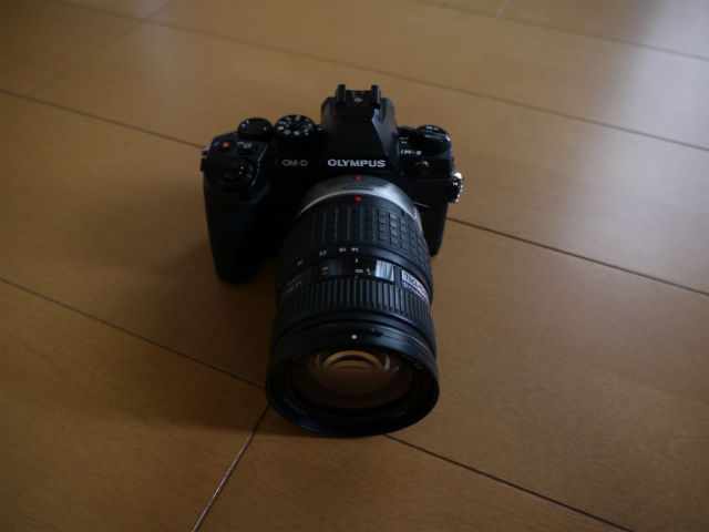 P1070873.jpg