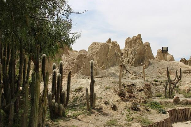 ボリビア・ペルー旅行:月の谷 サボテン