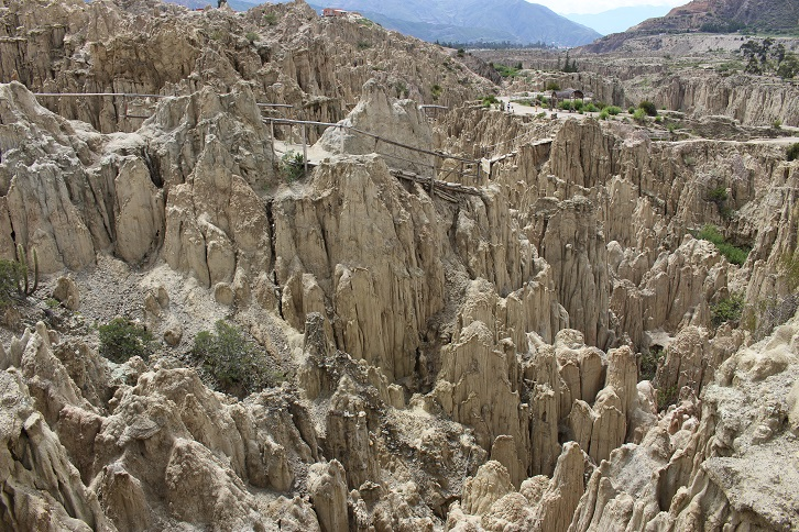 ボリビア・ペルー旅行:月の谷4