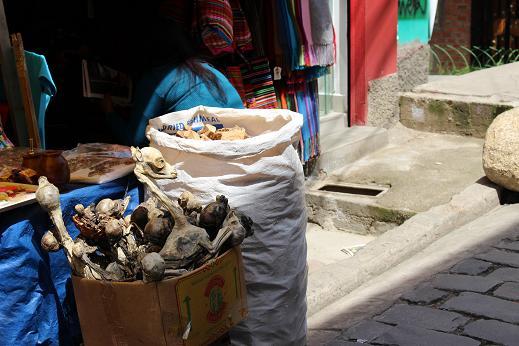 ボリビア・ペルー旅行:ラパス旧市街 魔女通り リャマのミイラ2