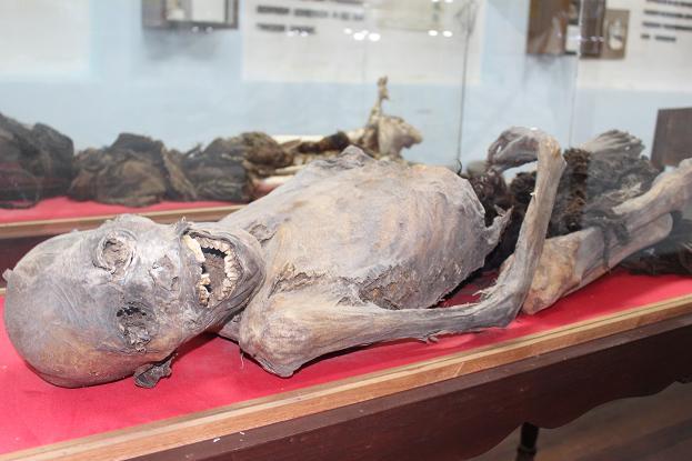 ボリビア・ペルー旅行:ウユニ塩湖 塩の博物館 ミイラ