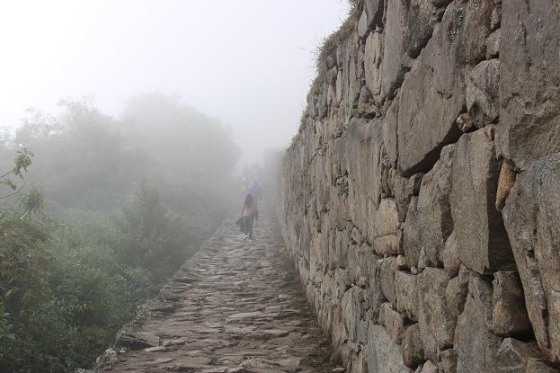ボリビア・ペルー旅行:マチュピチュ遺跡 インカ道