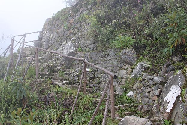 ボリビア・ペルー旅行:マチュピチュ 太陽の門近く