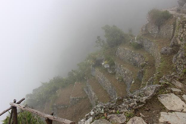 ボリビア・ペルー旅行:マチュピチュ 太陽の門近く2