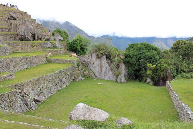 ボリビア・ペルー旅行:マチュピチュ遺跡 メイン広場 アルパカ