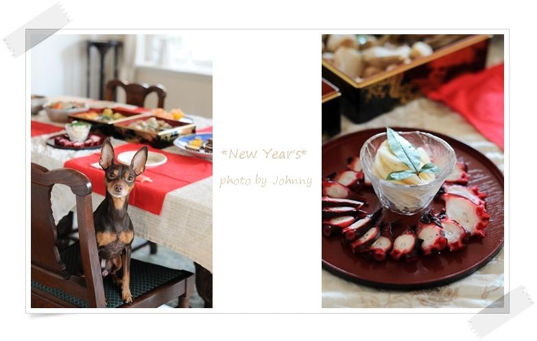 cats20140330-2.jpg