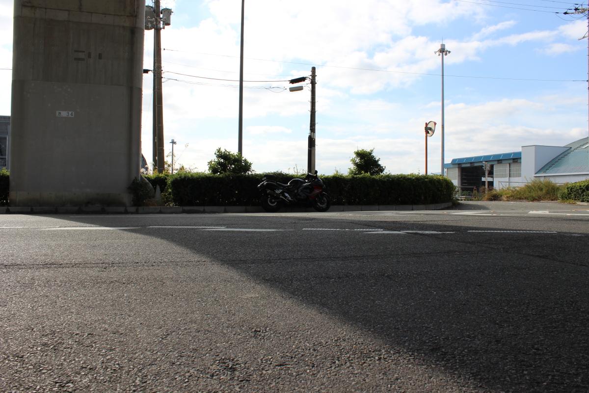 池田市五月山公園の紅葉