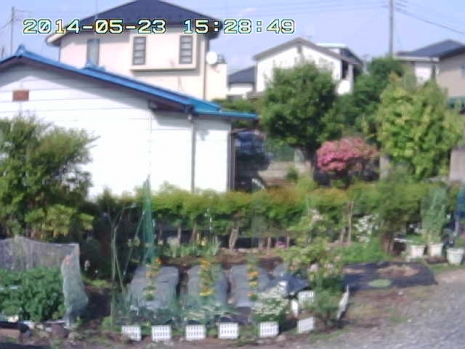 Motion-2014-05-23_15-28-50.jpg