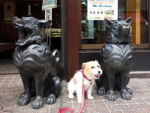 川崎大師前・久寿餅屋さんの狛犬くんと