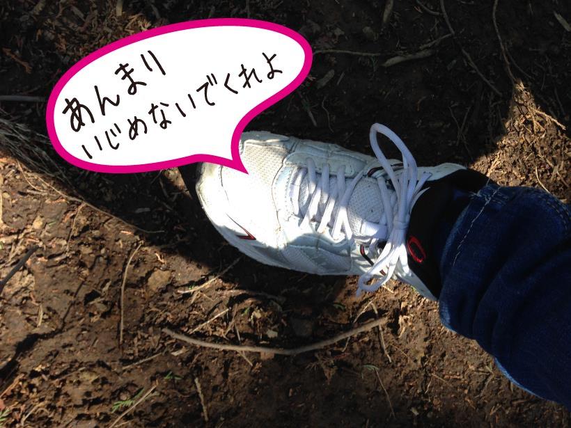 daigomaru41.jpg