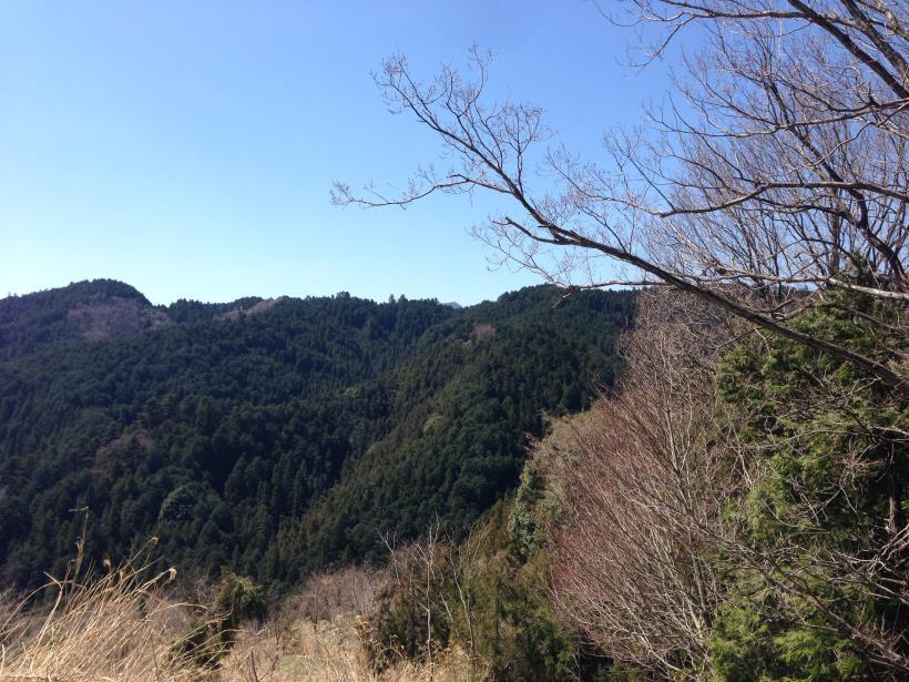 gaiyouyama07.jpg