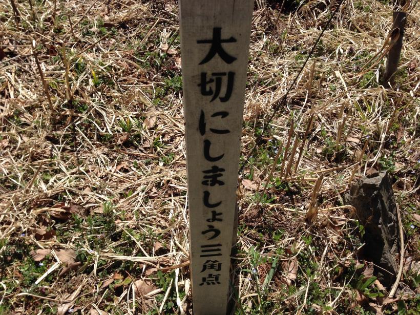 gaiyouyama09.jpg