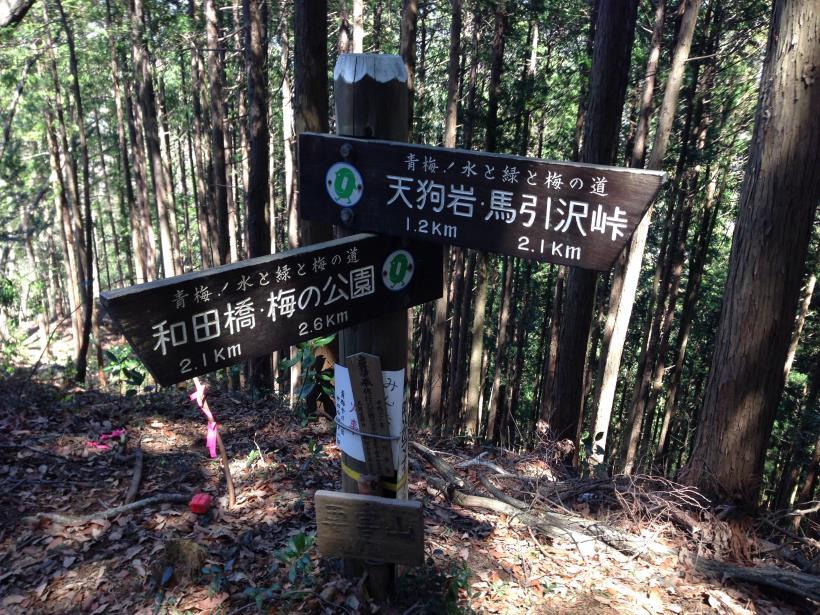 gaiyouyama22.jpg