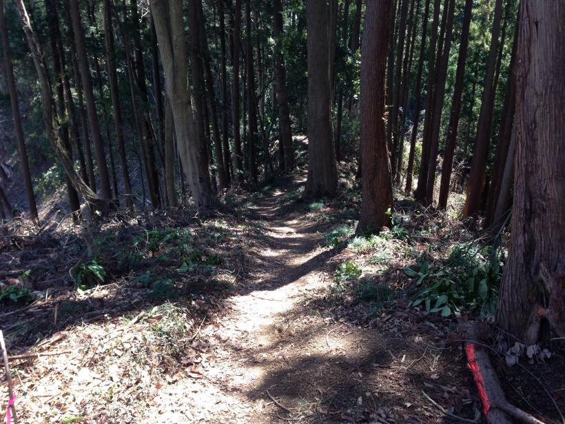 gaiyouyama33.jpg