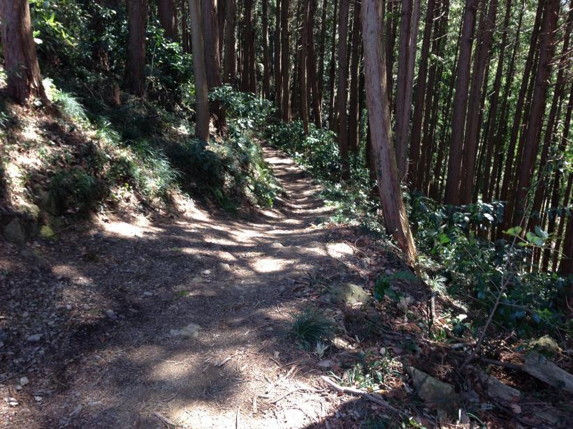 gaiyouyama38.jpg