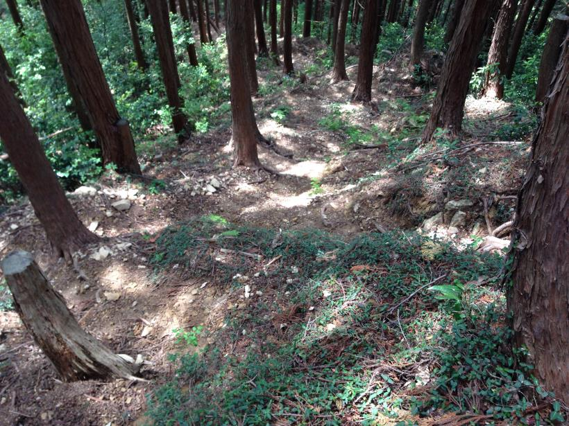 hirasakatobimura19.jpg