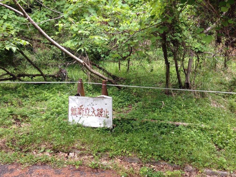 hirasakatobimura22.jpg