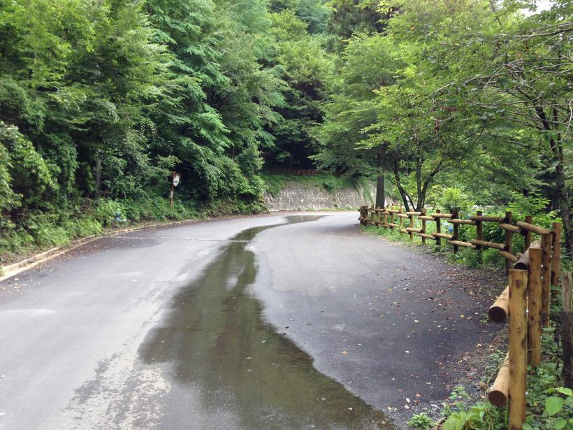 hirokawara19.jpg