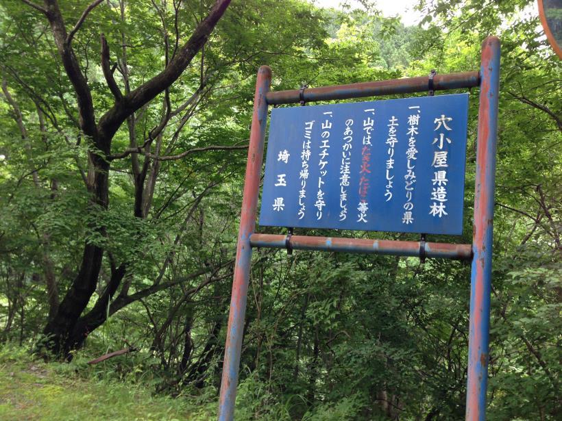 hirokawarasakasa21.jpg