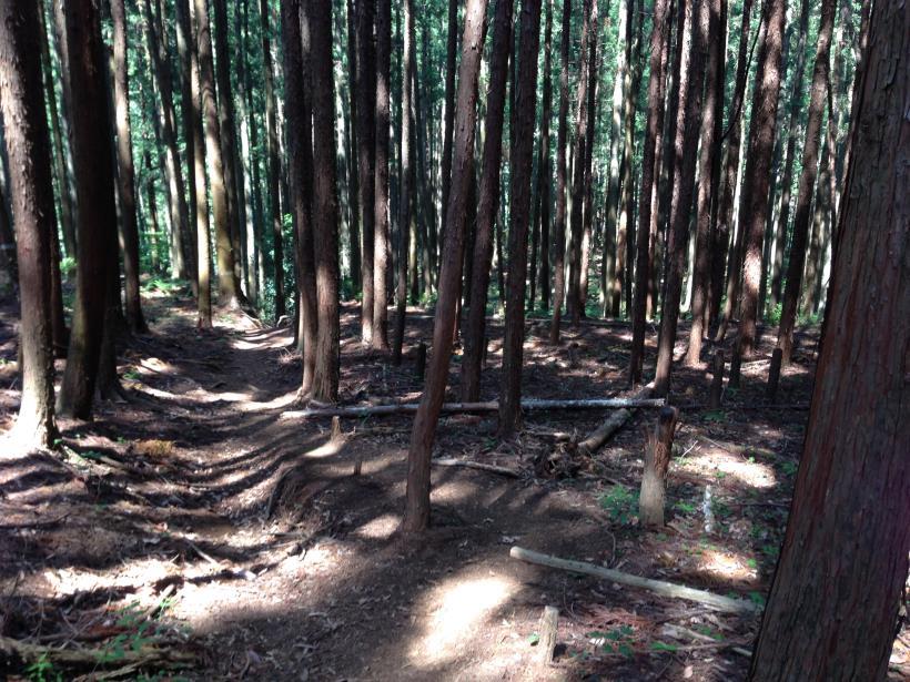 kawamatahe32.jpg