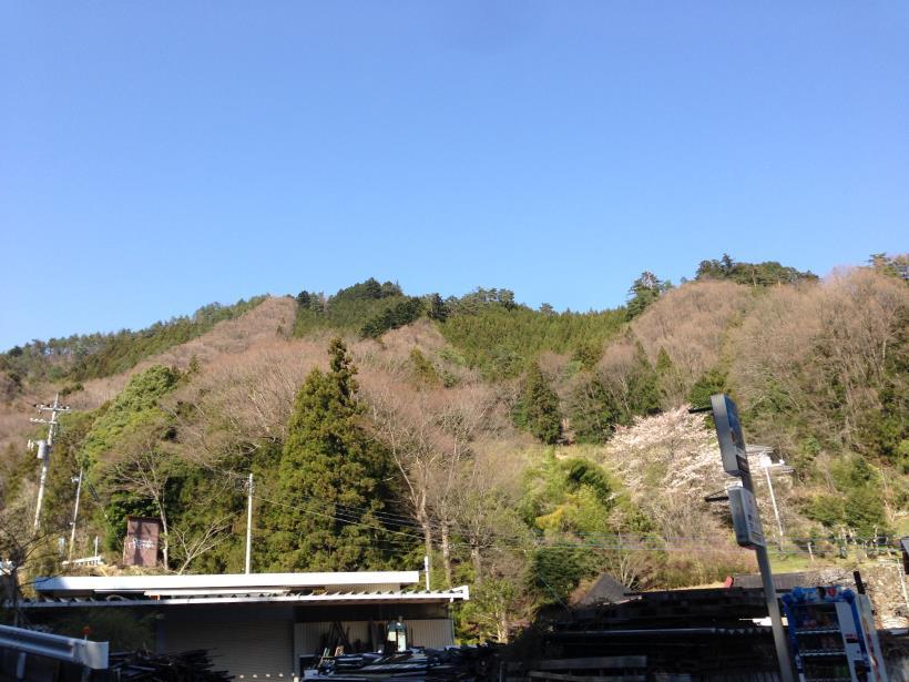 kendoaruki22.jpg