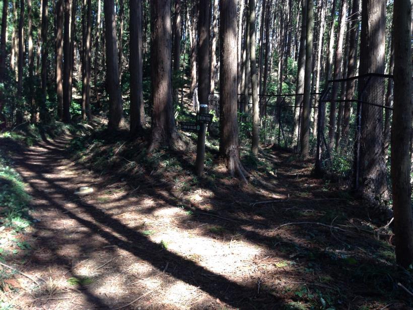 mabikizawa06.jpg