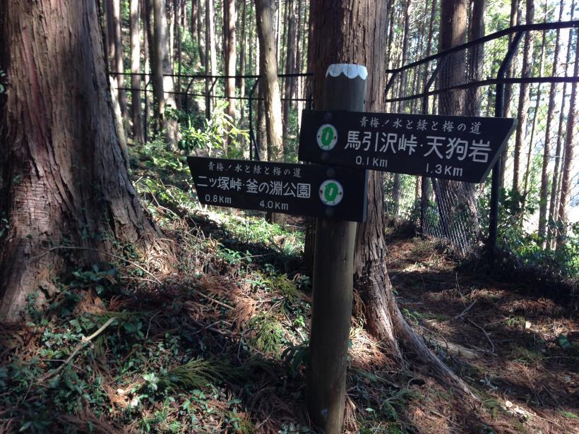 mabikizawa07.jpg