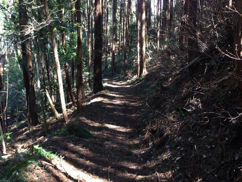 mabikizawa08.jpg