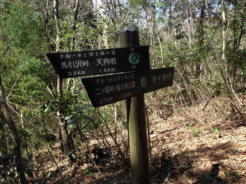 mabikizawa09.jpg
