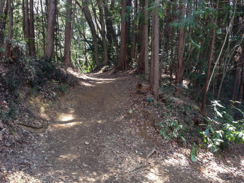 mabikizawa10.jpg