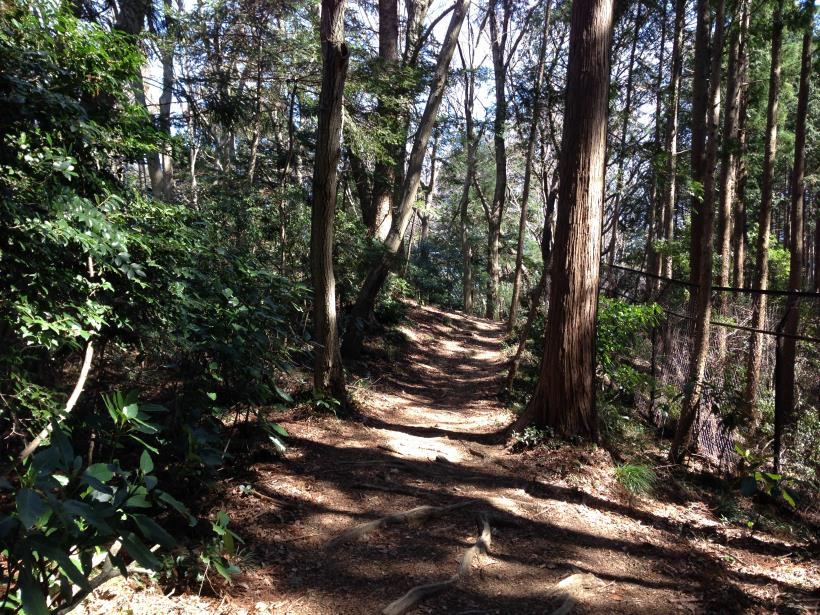 mabikizawa13.jpg