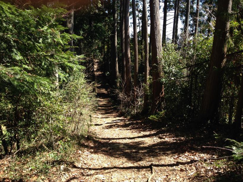 mabikizawa14.jpg