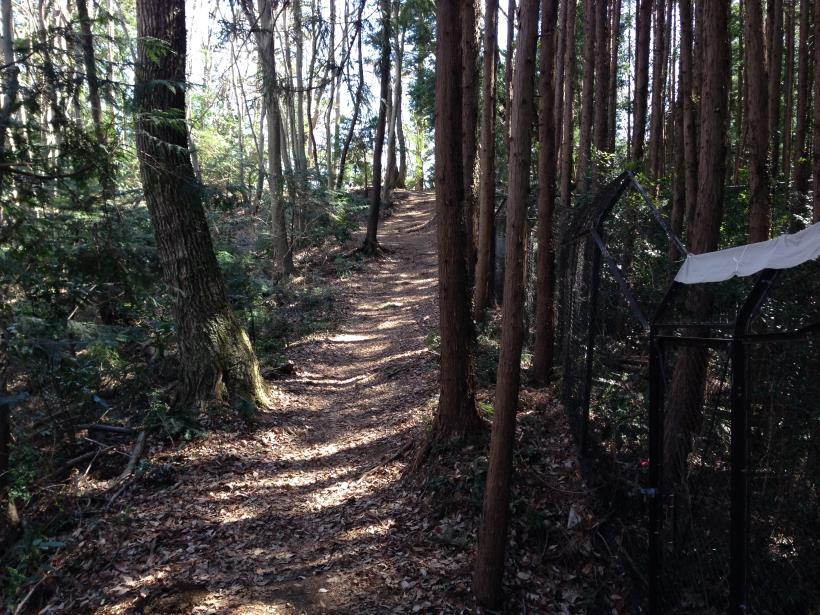 mabikizawa21.jpg