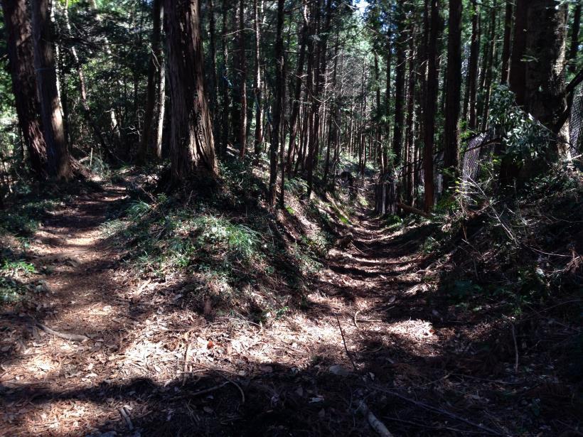 mabikizawa26.jpg