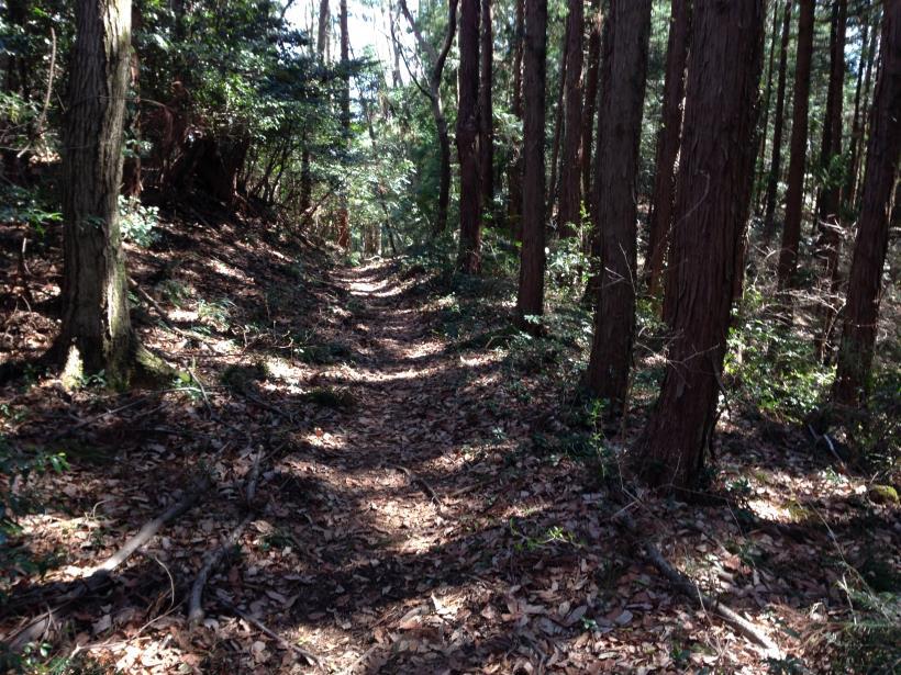 mabikizawa28.jpg