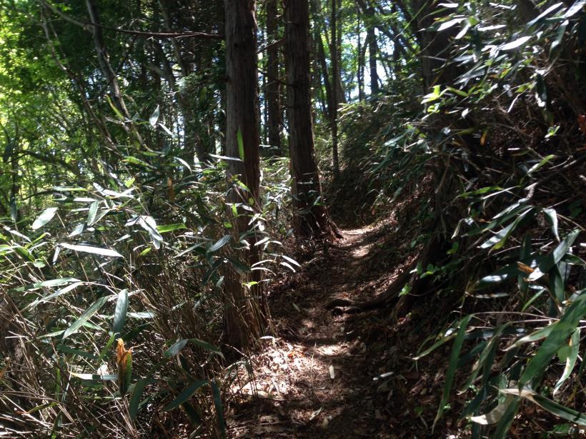 mazukarione29.jpg