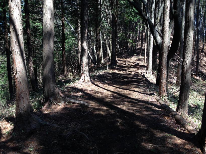 mikuniyama01.jpg