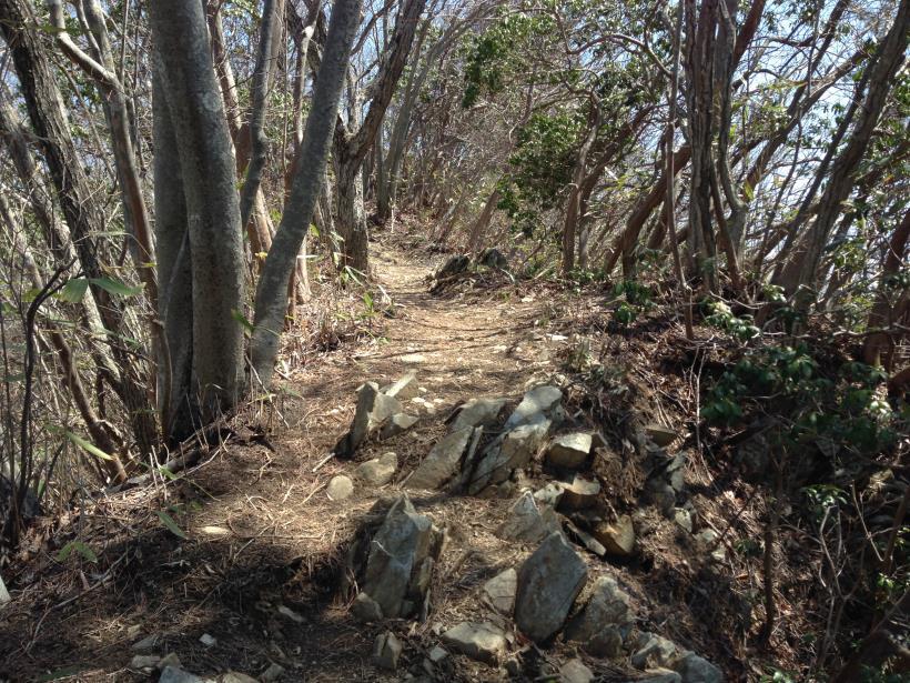 mikuniyama34.jpg