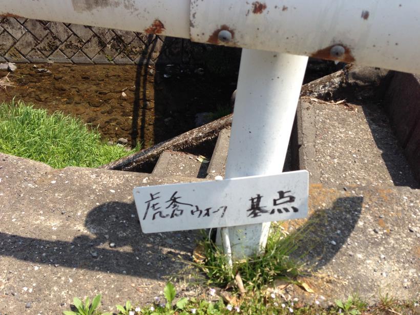 mtsukura01.jpg