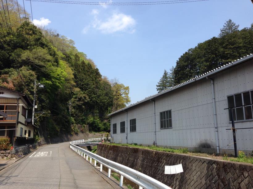 mtsukura02.jpg